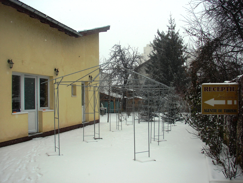 Iarna pe terasa
