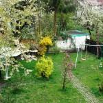 Pensiunea Paloma inainte de Florii  (1)