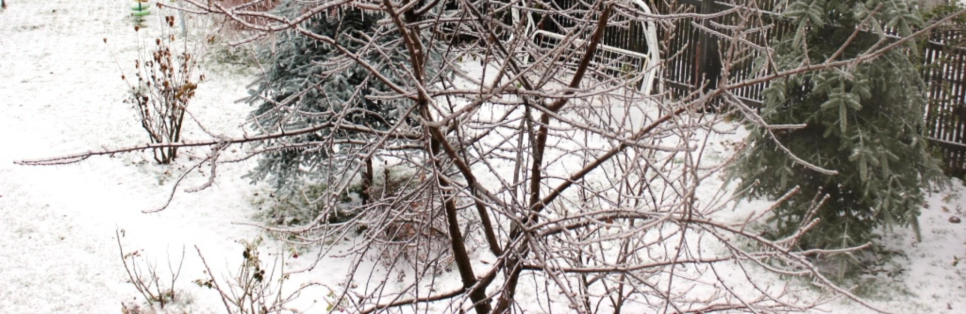 cropped-iarna-01.12.2014.jpg